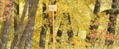 OG-Pruefung-Herbst-2014-002