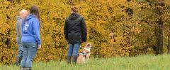 OG-Pruefung-Herbst-2014-005