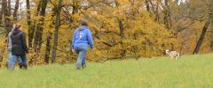 OG-Pruefung-Herbst-2014-009