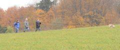 OG-Pruefung-Herbst-2014-013