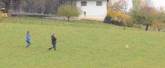 OG-Pruefung-Herbst-2014-025