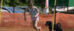 BS_LM_2017_0646