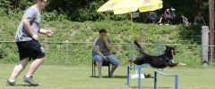 BS_LM_2017_0653