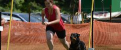 BS_LM_2017_0656