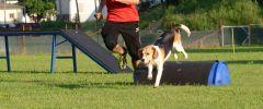 CSC-Training-20150602-059