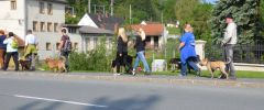 Wandertag-20140501-052
