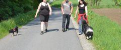 Wandertag-20140501-099