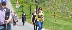 Wandertag-20140501-169