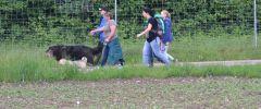 Wandertag-20150514-029