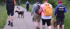 Wandertag-20150514-030