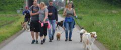 Wandertag-20150514-081