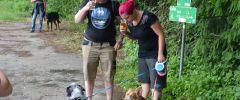 Wandertag-20150514-123