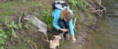 Wandertag-20150514-184