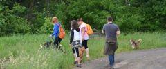 Wandertag-20150514-189