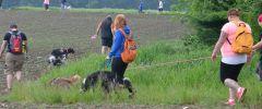 Wandertag-20150514-191